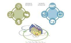 Cradle to Cradle Design in Architecture